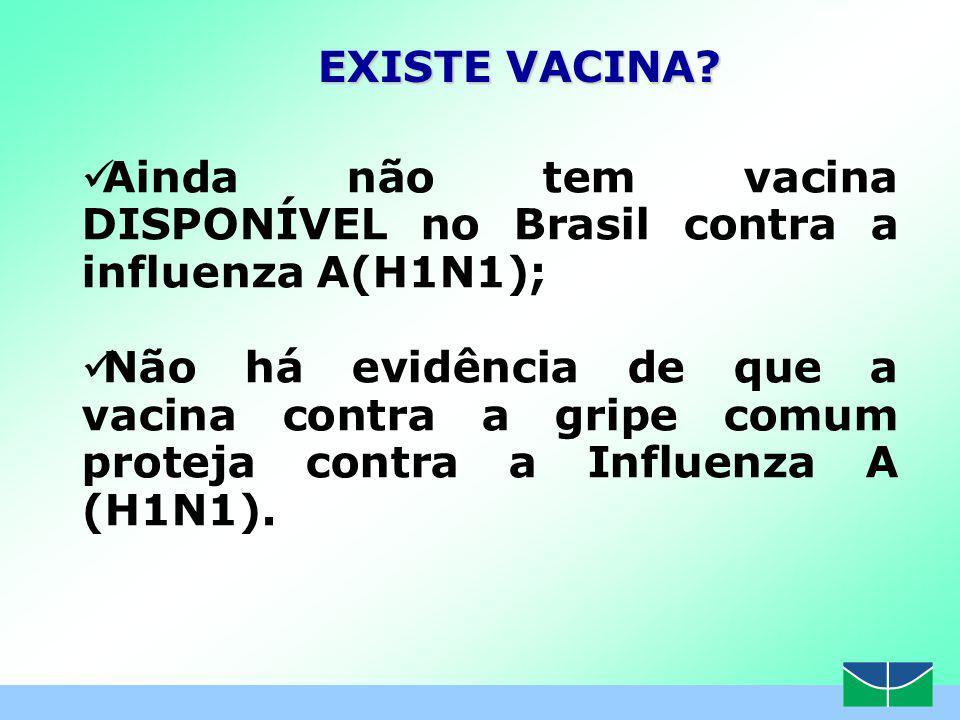Ainda não tem vacina DISPONÍVEL no Brasil contra a influenza A(H1N1);