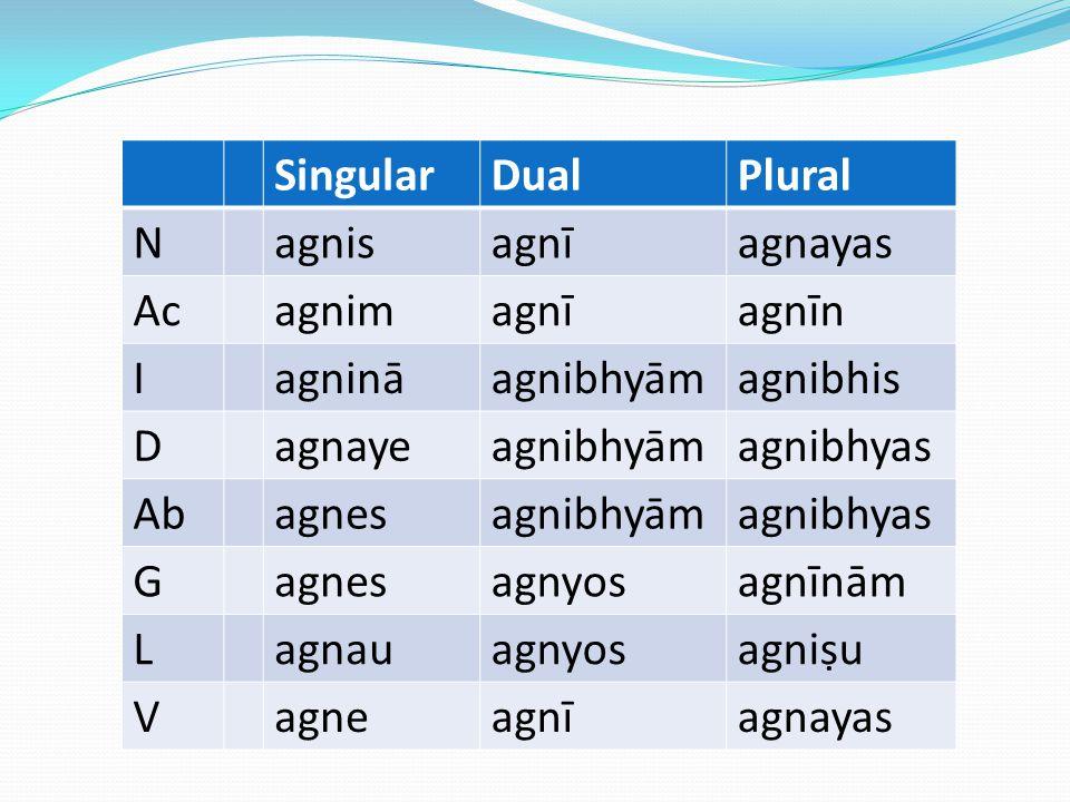 Singular Dual. Plural. N. agnis. agnī. agnayas. Ac. agnim. agnīn. I. agninā. agnibhyām. agnibhis.