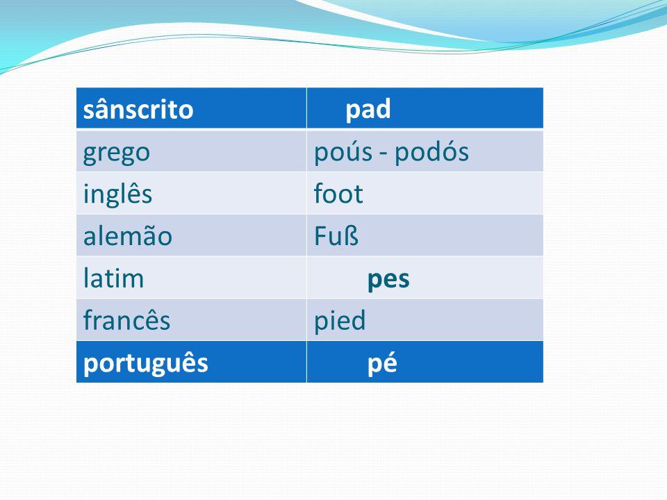 sânscrito pad grego poús - podós inglês foot alemão Fuß latim pes francês pied português pé