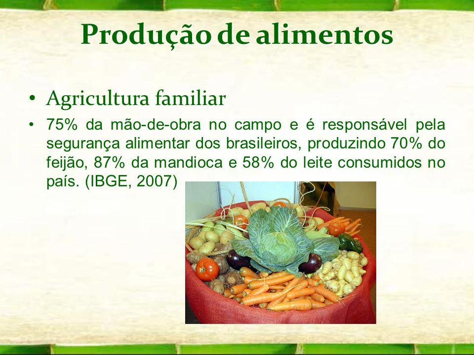 Produção de alimentos Agricultura familiar