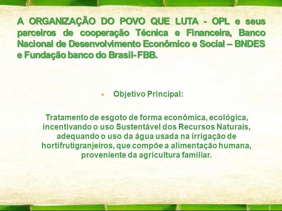 A ORGANIZAÇÃO DO POVO QUE LUTA - OPL e seus parceiros de cooperação Técnica e Financeira, Banco Nacional de Desenvolvimento Econômico e Social – BNDES e Fundação banco do Brasil- FBB.