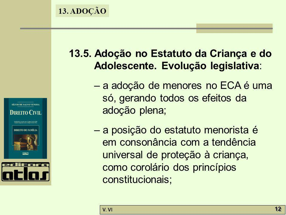 13. 5. Adoção no Estatuto da Criança e do Adolescente