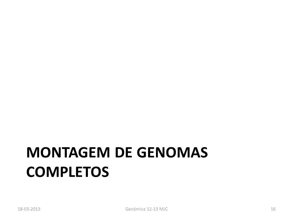 Montagem de genomas completos