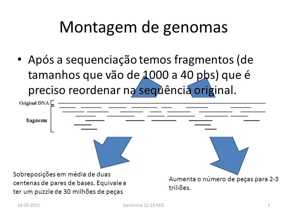 Montagem de genomas Após a sequenciação temos fragmentos (de tamanhos que vão de 1000 a 40 pbs) que é preciso reordenar na sequência original.