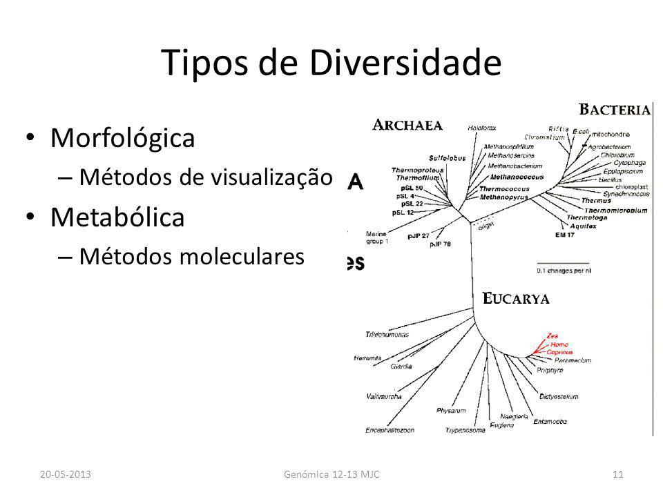 Tipos de Diversidade Morfológica Metabólica Métodos de visualização
