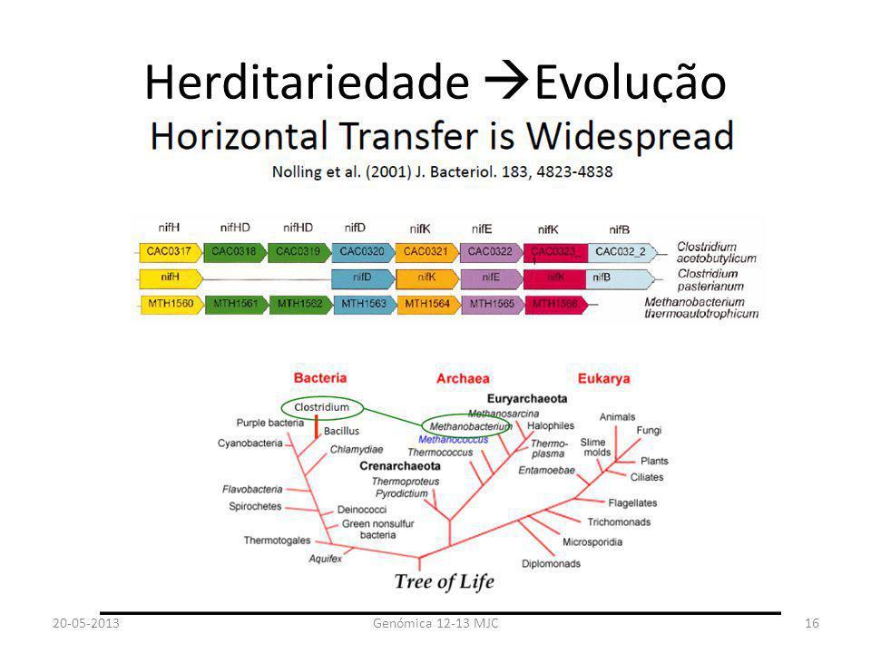Herditariedade Evolução
