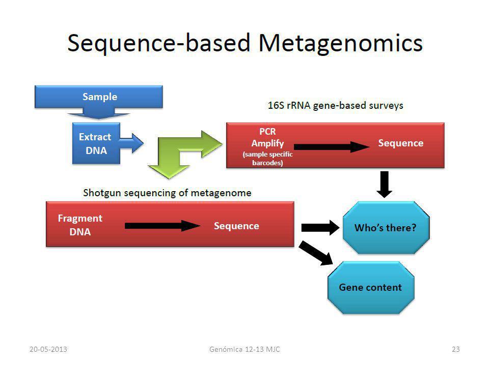20-05-2013 Genómica 12-13 MJC