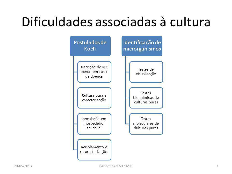 Dificuldades associadas à cultura