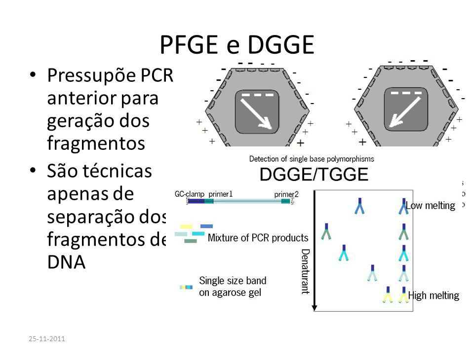 Laboratórios Biomoleculares I MJC - T01-02