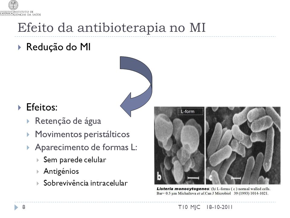 Efeito da antibioterapia no MI