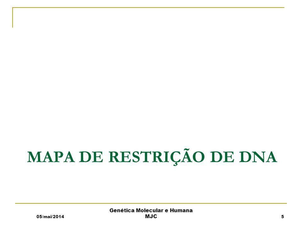 Mapa de restrição de DNA