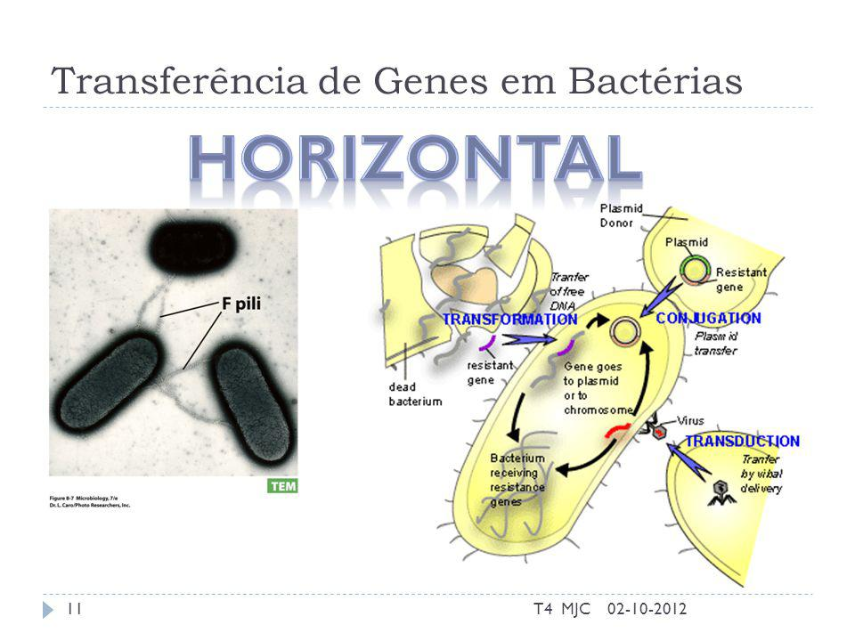 Transferência de Genes em Bactérias