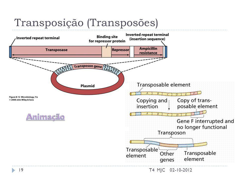 Transposição (Transposões)