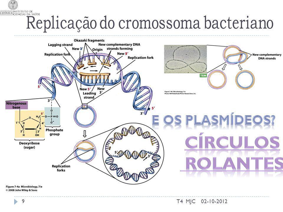 Círculos rolantes E os plasmídeos T4 MJC 02-10-2012