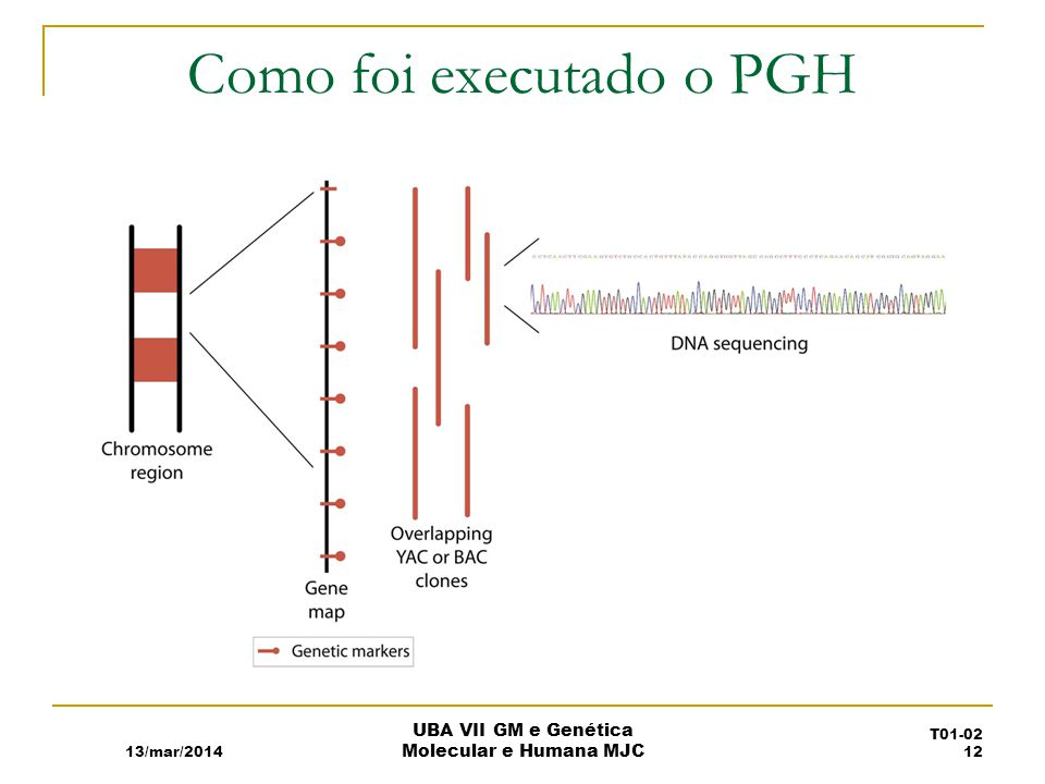 Como foi executado o PGH