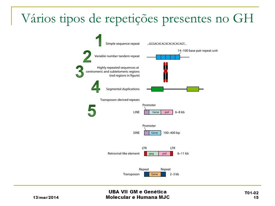 Vários tipos de repetições presentes no GH