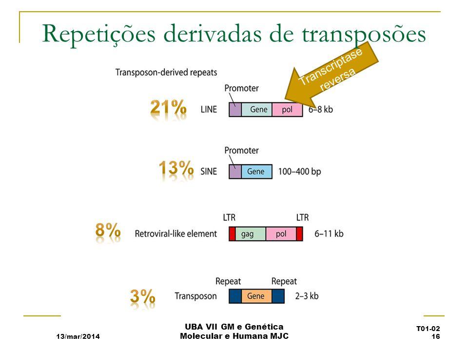 Repetições derivadas de transposões