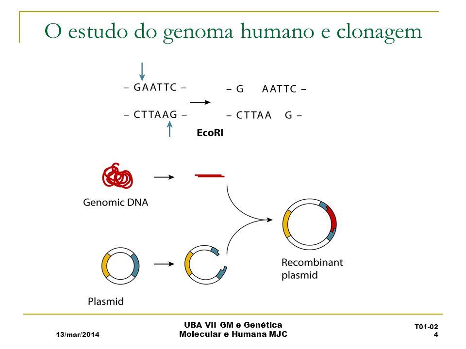 O estudo do genoma humano e clonagem