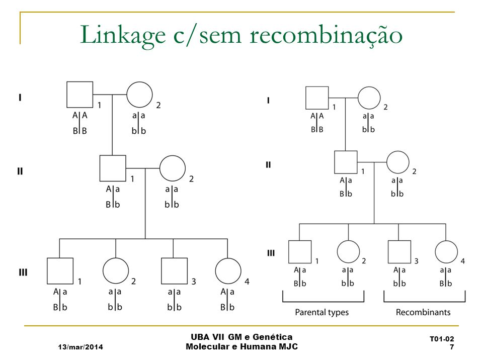 Linkage c/sem recombinação