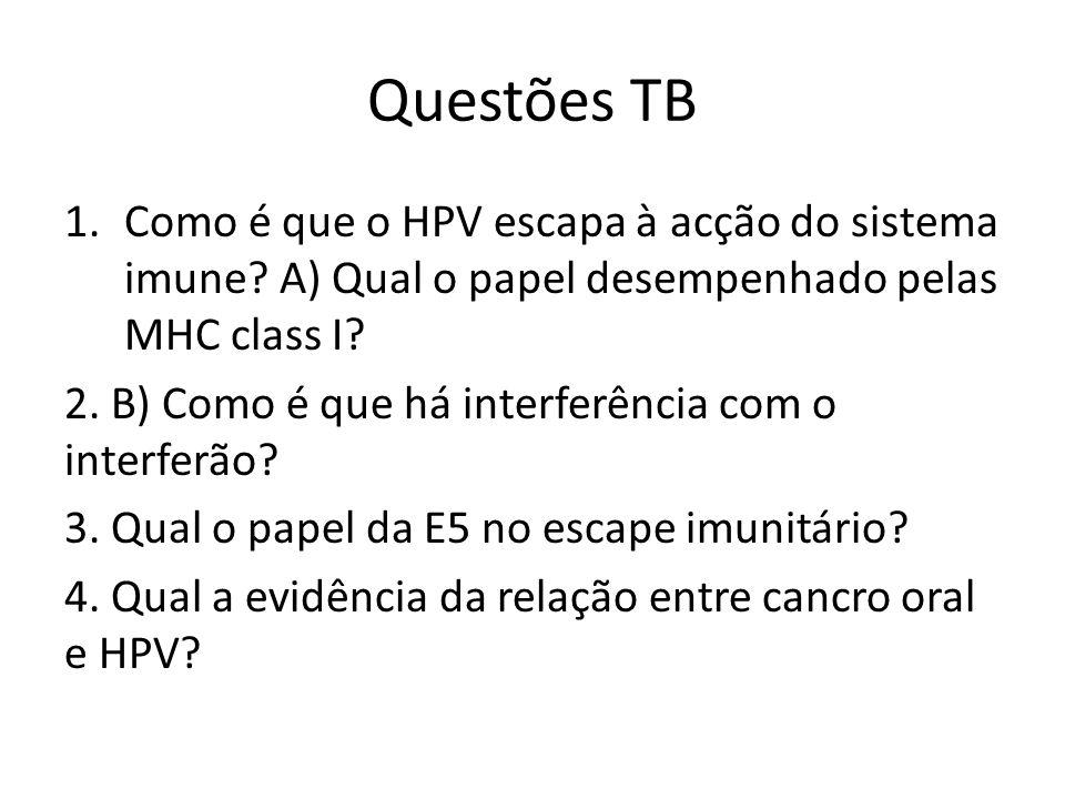 Questões TB Como é que o HPV escapa à acção do sistema imune A) Qual o papel desempenhado pelas MHC class I