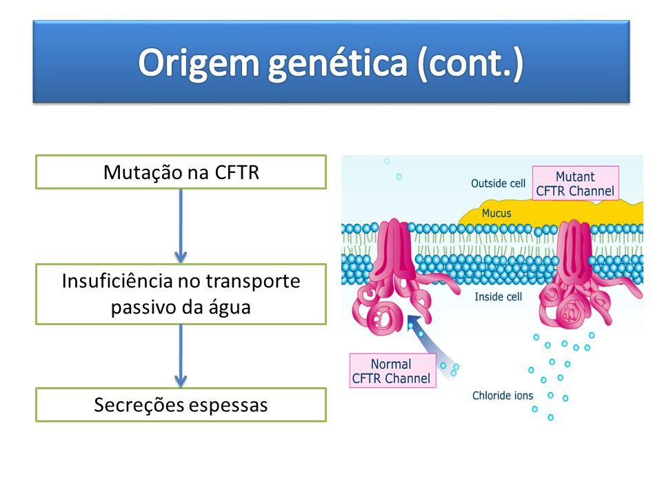 Origem genética (cont.)