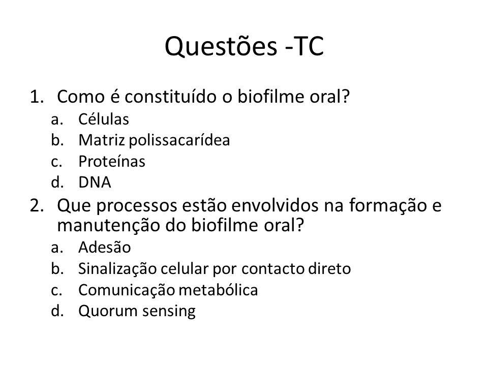 Questões -TC Como é constituído o biofilme oral