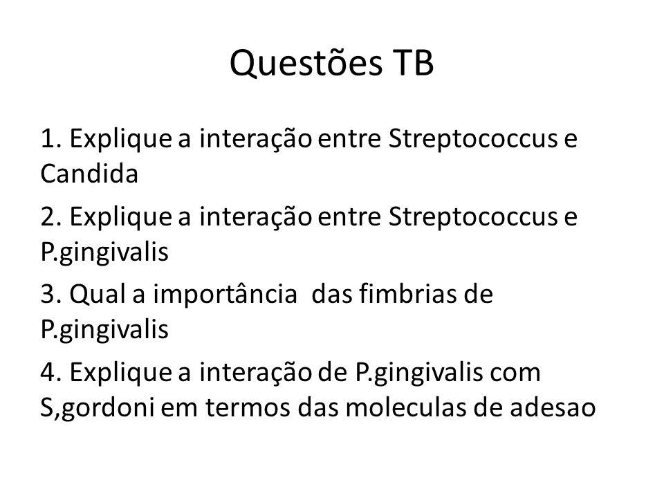 Questões TB 1. Explique a interação entre Streptococcus e Candida