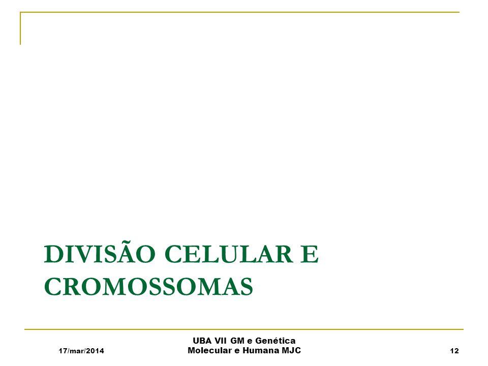 Divisão Celular e Cromossomas