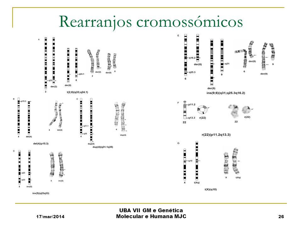 Rearranjos cromossómicos