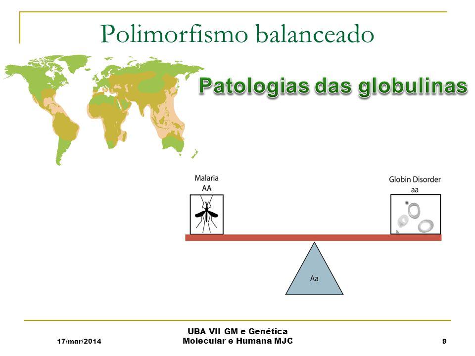 Polimorfismo balanceado