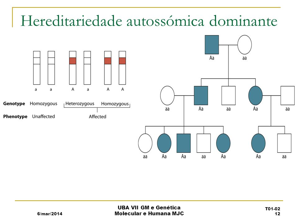 Hereditariedade autossómica dominante