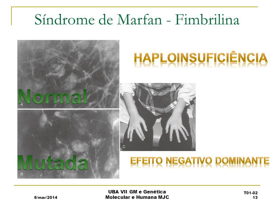Síndrome de Marfan - Fimbrilina