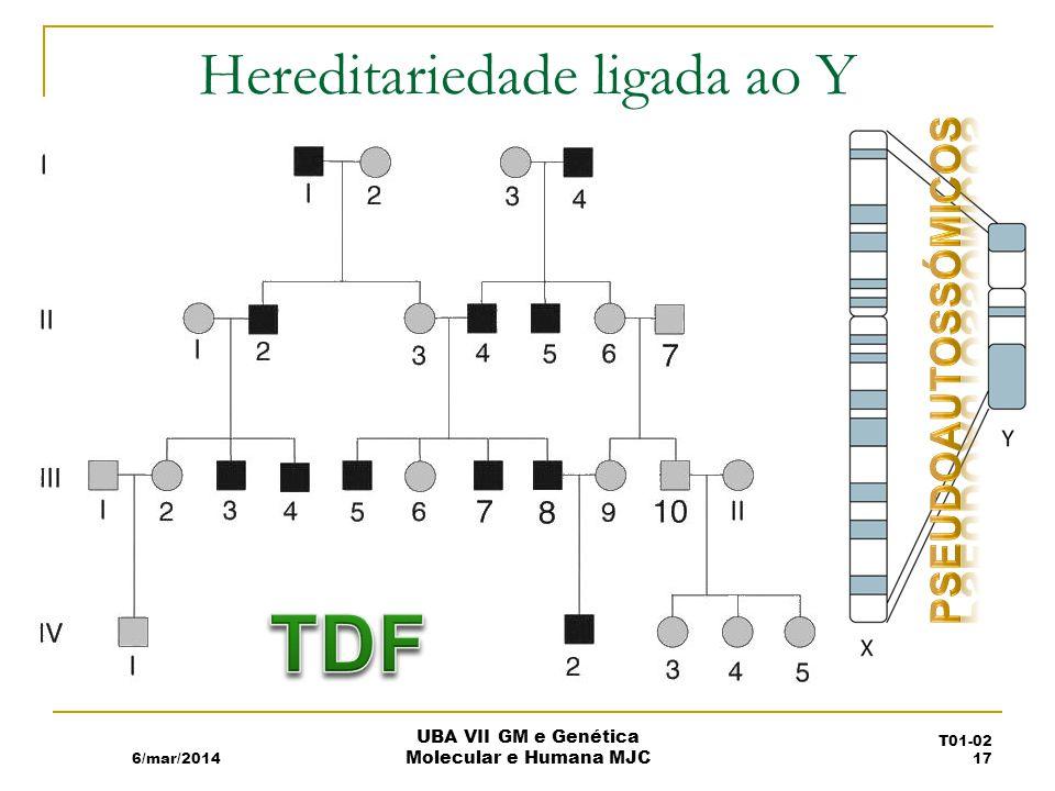 Hereditariedade ligada ao Y