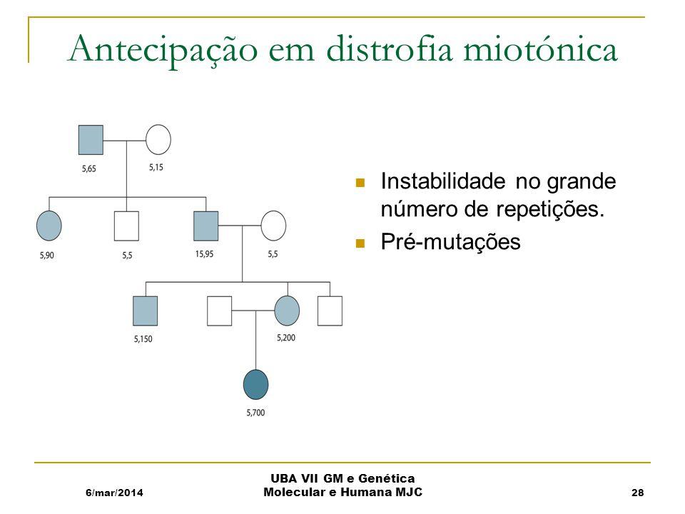 Antecipação em distrofia miotónica