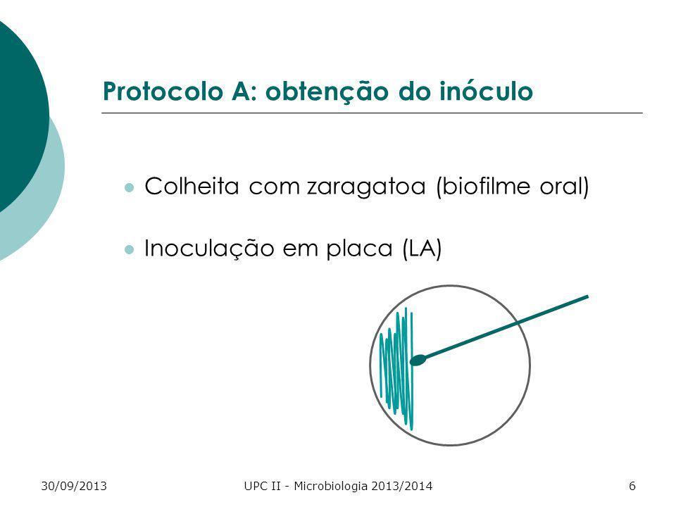 Protocolo A: obtenção do inóculo
