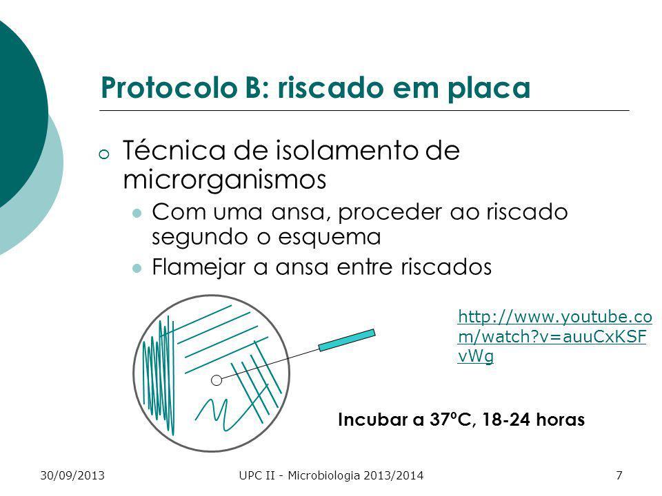 Protocolo B: riscado em placa
