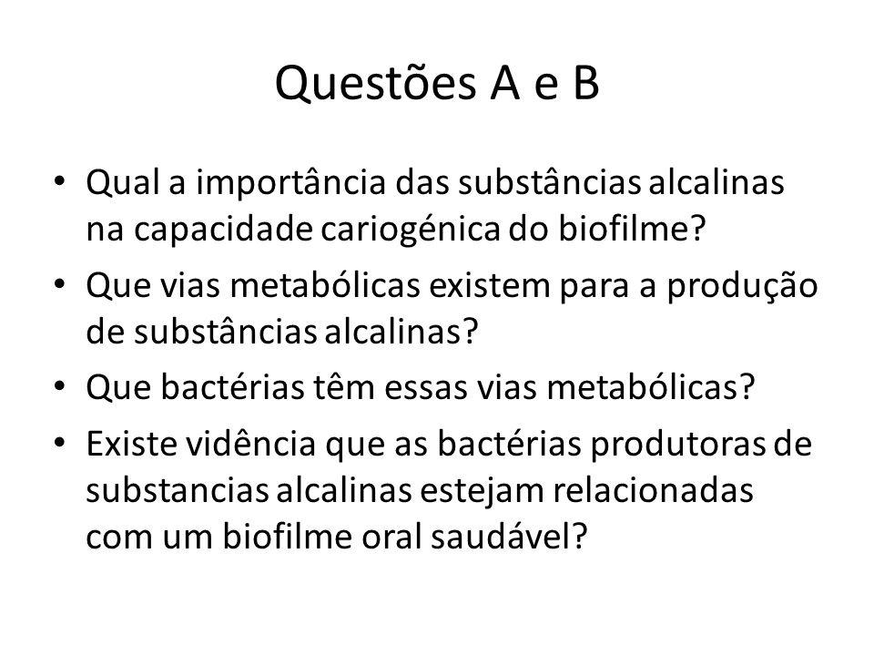 Questões A e B Qual a importância das substâncias alcalinas na capacidade cariogénica do biofilme