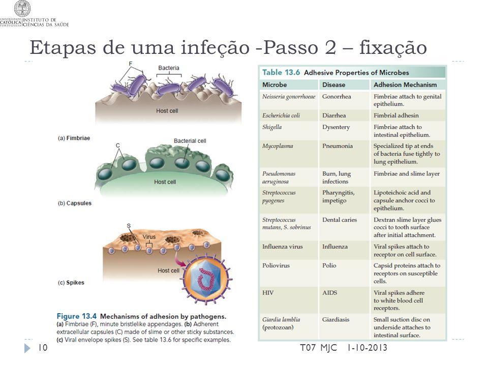 Etapas de uma infeção -Passo 2 – fixação