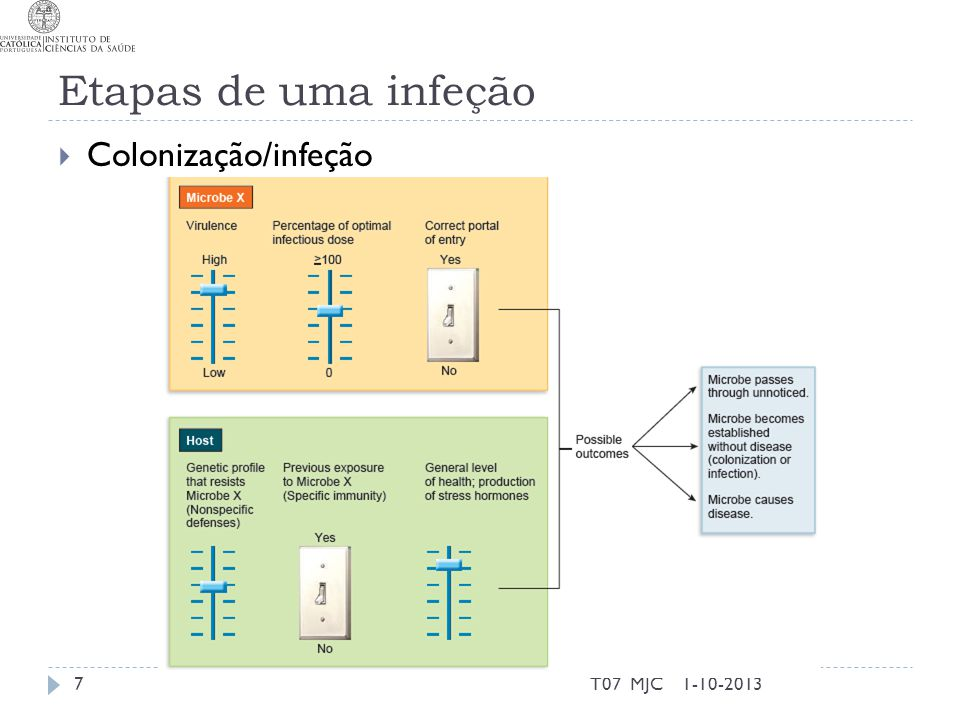 Etapas de uma infeção Colonização/infeção T07 MJC 1-10-2013