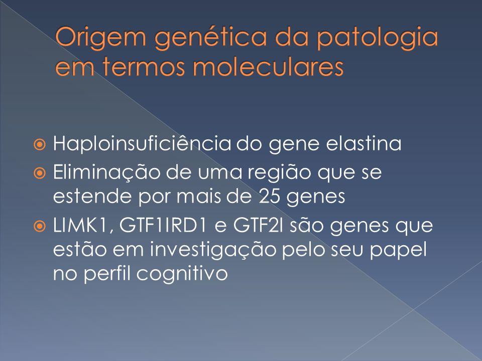 Origem genética da patologia em termos moleculares
