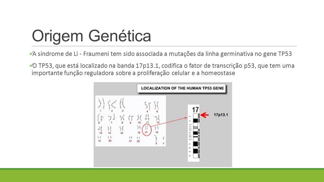 Origem Genética A síndrome de Li - Fraumeni tem sido associada a mutações da linha germinativa no gene TP53.