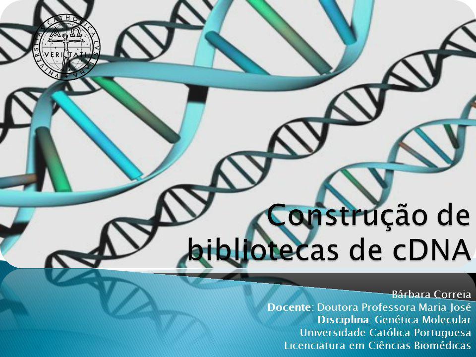 Construção de bibliotecas de cDNA