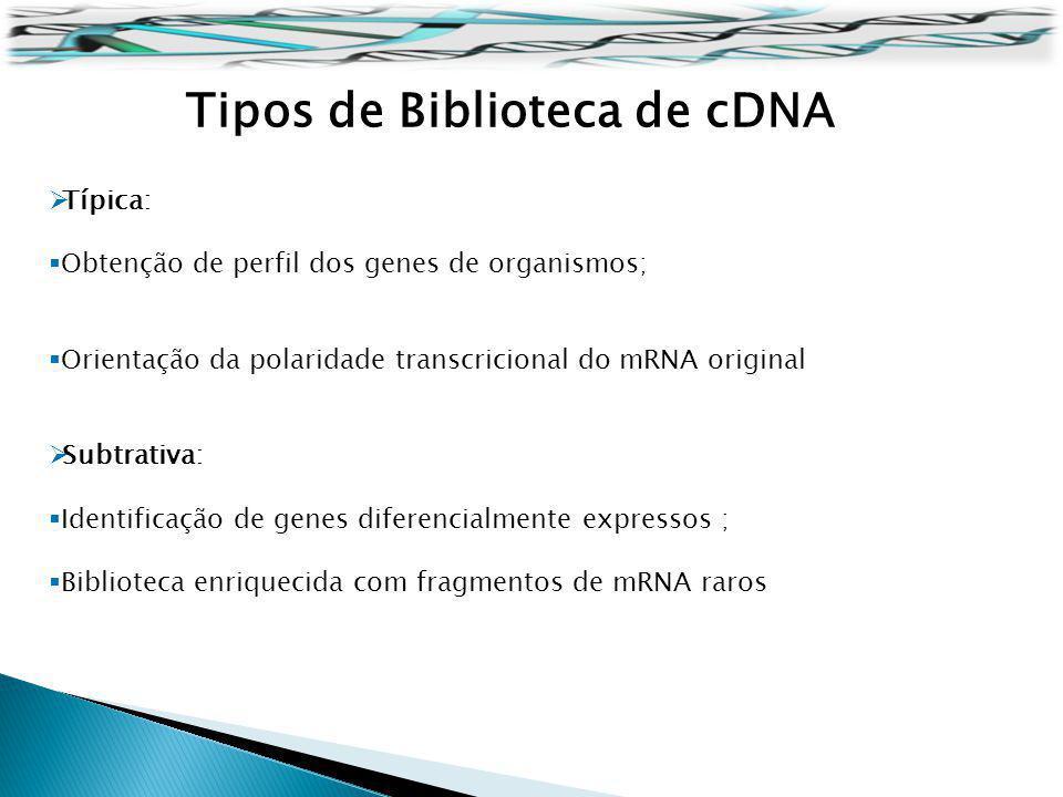 Tipos de Biblioteca de cDNA