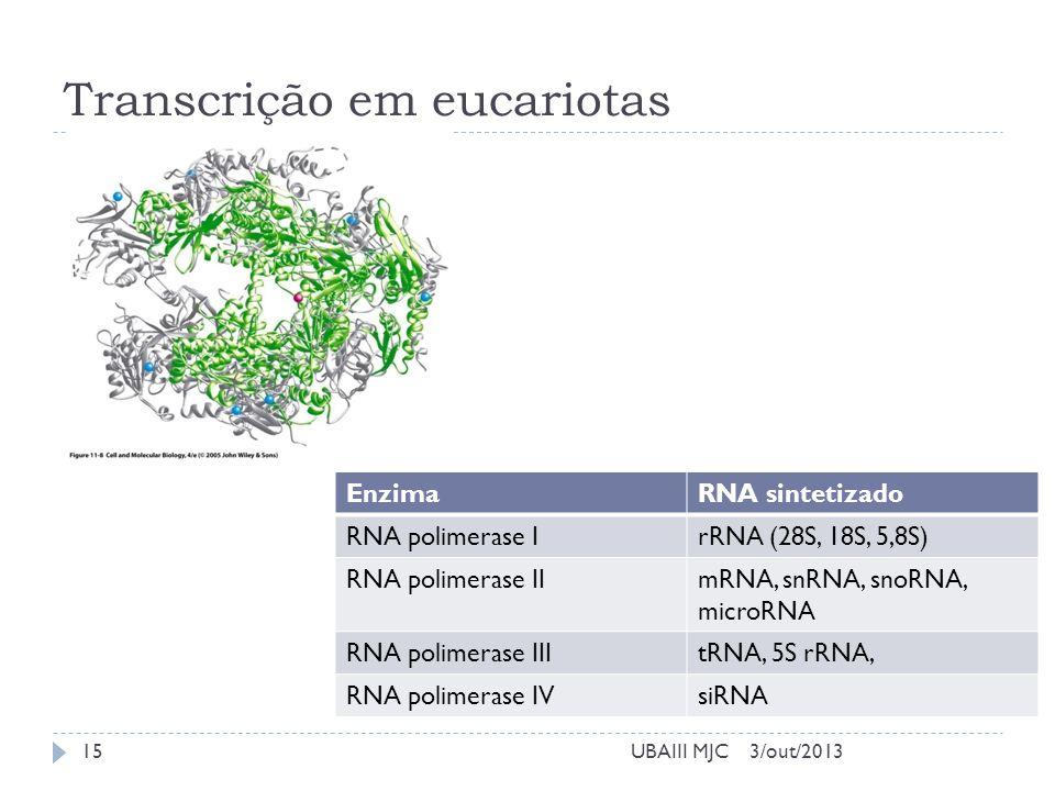 Transcrição em eucariotas