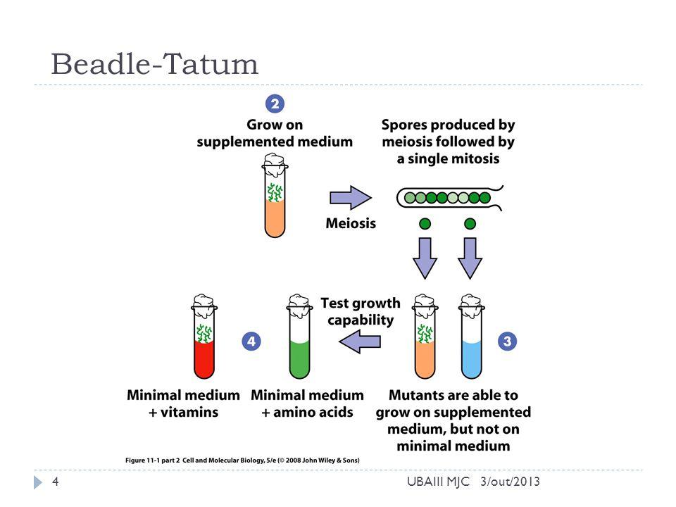 Beadle-Tatum UBAIII MJC 3/out/2013
