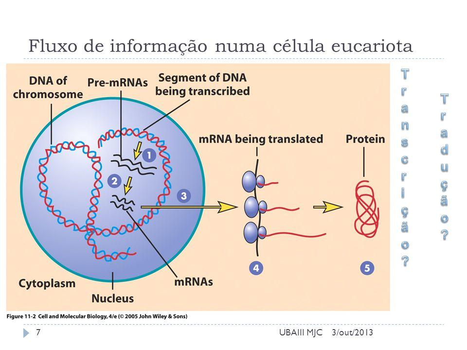 Fluxo de informação numa célula eucariota