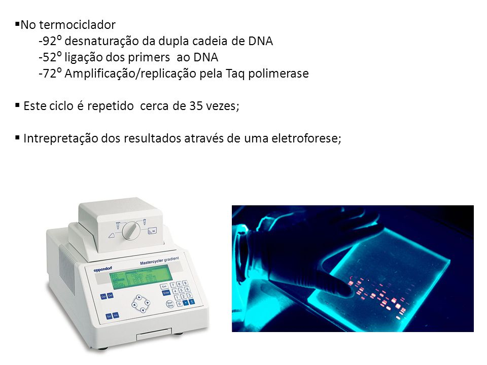 92º desnaturação da dupla cadeia de DNA 52º ligação dos primers ao DNA