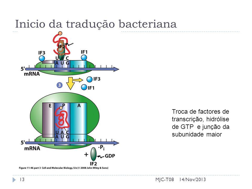 Inicio da tradução bacteriana