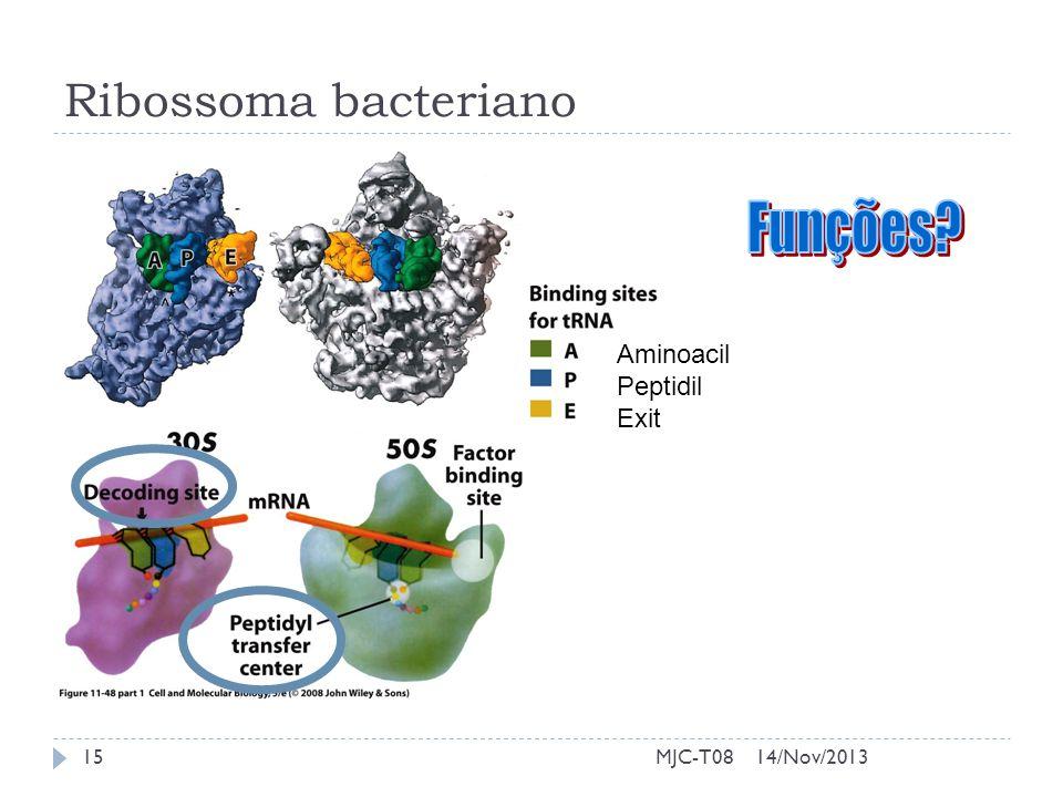 Funções Ribossoma bacteriano Aminoacil Peptidil Exit MJC-T08