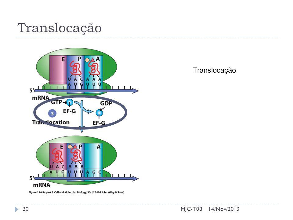 Translocação Translocação MJC-T08 14/Nov/2013